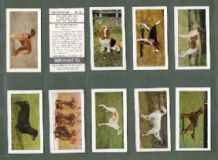 TRADE/ cigarette cards Dogs. Complete 1961 by Horniman's tea